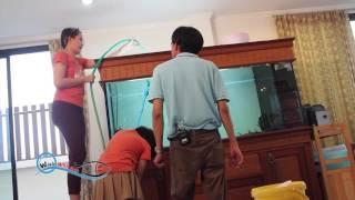getlinkyoutube.com-Wish with fish การล้างตู้ปลาไม่ให้ปลาน็อคน้ำ ช่วง3
