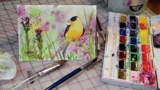 getlinkyoutube.com-how to draw and paint goldfinch watercolor