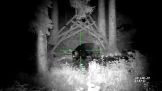 getlinkyoutube.com-ATN X-Sight 3-12X, IR Uniquefire T50.