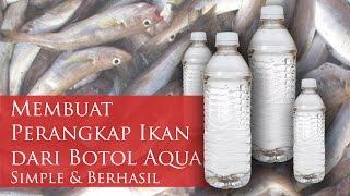 getlinkyoutube.com-Membuat Perangkap Ikan dari Botol Aqua | Terjamin Simpel