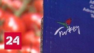 Турецким овощам откроют доступ к российским прилавкам