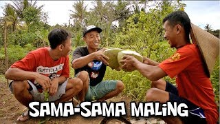 Sama Sama Maling (Film Pendek Lucu Boyolali)   Sambel Korek