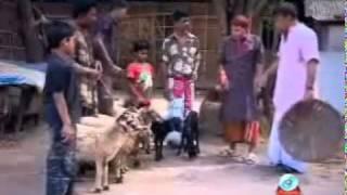 getlinkyoutube.com-Bangladeshi Koutuk Harun Kisinzar