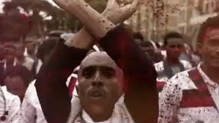 Documentary gabaabaa Qeerroo Oromo osoo falmatu qaroo ( ija) isaa dhabe kana daawwadha