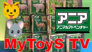 getlinkyoutube.com-アニア 12種類の動物のおもちゃ -  タカラトミー - のHD編集(00406 z jp)