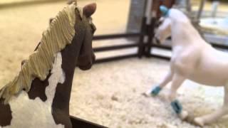 getlinkyoutube.com-Schleich Horse Movie -A Fault In Love part 3