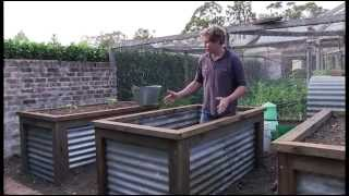 getlinkyoutube.com-Chris Francis presents a method of constructing a group of raised vegie beds.