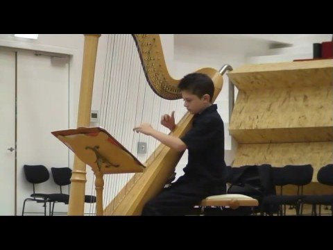 Harp Music: Sonata in D major - John Parry