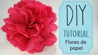 getlinkyoutube.com-[DIY] Tutorial - Como hacer flores de papel Crepe o China || Kaele