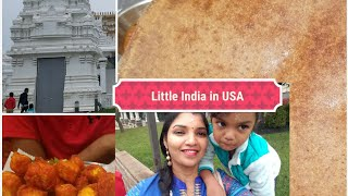 VLOG | LITTLE INDIA IN USA | NEW JERSEY