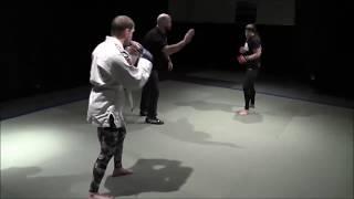 woman vs man mma fight