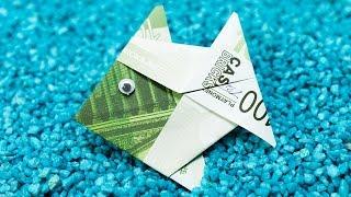 getlinkyoutube.com-Fisch falten aus Geldschein 🐠 DIY Origami Geldgeschenk Idee