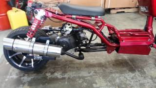 getlinkyoutube.com-Maddog 50cc at Scooters To Go
