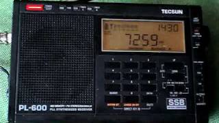 getlinkyoutube.com-PY2CWW em AM 40m. Rx DX com Tecsun PL-600