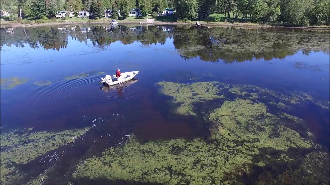 Dégradation du lac à la Truite (Vidéo)
