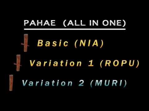 PAHAE-ALL IN ONE