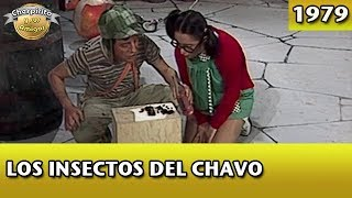 El Chavo | Los insectos del Chavo (Completo) width=