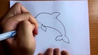getlinkyoutube.com-วาดการ์ตูนกันเถอะ สอนวาดการ์ตูน ปลาโลมา ง่ายๆ หัดวาดตามได้เลย