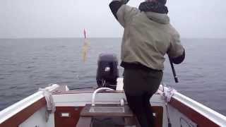 getlinkyoutube.com-Calamari a plen tubo!!!!