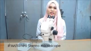 getlinkyoutube.com-การเตรียมสไลด์ (Slide) และการใช้กล้องจุลทรรศน์ ( Microscope)