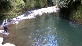 getlinkyoutube.com-Fly fishing in some of the best trout fishing water I have ever seen!