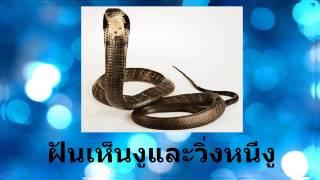 getlinkyoutube.com-ฝันเห็นงูและวิ่งหนีงู