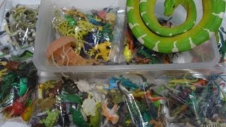 getlinkyoutube.com-What's in the box: Small Plastic Animals! 100's of Reptiles, Fish, Dinosaurs, Bugs and more!