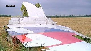 گزارش تیم تحقیق درباره سقوط هواپیمای مالزی بر فراز آسمان اوکراین منتشر می شود