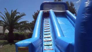 getlinkyoutube.com-Dogs on a Jumbo Water Slide