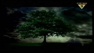 getlinkyoutube.com-William Orbit - Barber's Adagio For Strings
