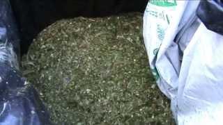 getlinkyoutube.com-cómo hacer un silo de maíz picado directo.avi