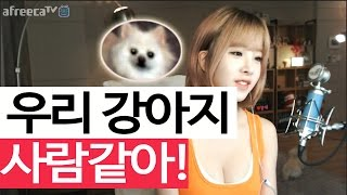 getlinkyoutube.com-이설]우리 강아지(작은설이) 사람같아!!