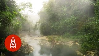 The Amazon's Boiling River Kills Anything That Enters width=