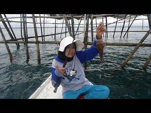 Mancing mania - strike ikan kerapu | Lady Angler Anya