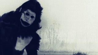 getlinkyoutube.com-BEST Bigfoot Proof and Evidence of Bigfoot's Existence?! (Sasquatch Caught on Camera)
