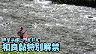 getlinkyoutube.com-【和良おこし協議会】和良鮎特別解禁(2015年6月6日)
