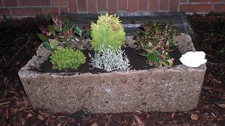 getlinkyoutube.com-Beton giessen -Großer Pflanztrog aus Hypertufa mit Perlite, Blumenerde und Zement