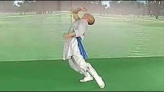getlinkyoutube.com-Shaolin drunken kung fu: form 1