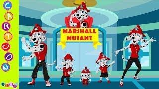 getlinkyoutube.com-Paw Patrol Marshall Mutant Human Finger Family Nursery Rhymes ◕‿◕ KidsF