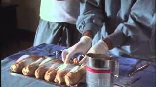 "getlinkyoutube.com-Van Wilder ""Dog Pastry"""