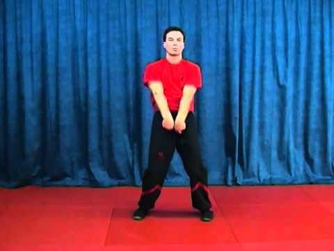 Siu-Nim-Tao-Form-by-Sifu-Martin-Dragos