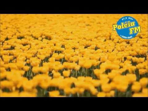 POLÉIA FM FM 15 ANOS EM PALESTINA
