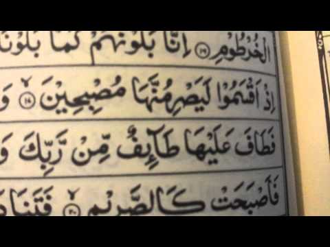 Beautiful Surah Qalam (Read along)