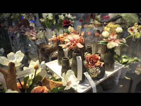 Vlog,Loja de decoracao e plantas no Natal (Holanda)