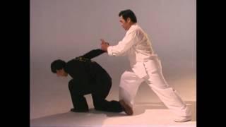 getlinkyoutube.com-Grandmaster James Shyun ACMF- 8 Step Preying Mantis Babu Tang Lang