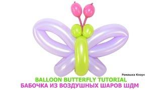 getlinkyoutube.com-БАБОЧКА ИЗ ДЛИННЫХ ШАРИКОВ ШДМ своими руками Balloon Butterfly Tutorial