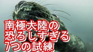 getlinkyoutube.com-【閲覧注意】南極大陸の恐ろしすぎる7つの試練/最凶の閲覧注意