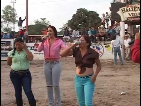 Caballos bailadores y jaripeo con toros de reparo en Jalisco