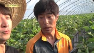 농업계 블루오션 스마트팜 / YTN 사이언스