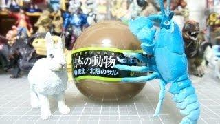 getlinkyoutube.com-日本の動物コレクションⅠ東北/北限のサル 「サンショウウオを狙え!」 PART3